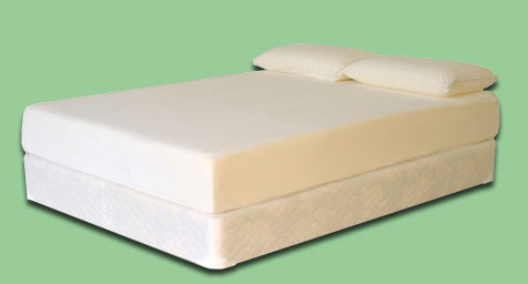 Visco Mattress With Shredded Pillows